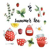 Set of summer tea, tableware, and plants berries and fruits, vector illustration