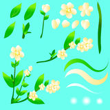 A set of summer yellow flowers and green leaves. For drawing up a design. There is a gradient and transparency. EPS 10 Stock Images