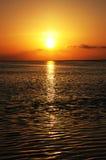 set sun 3 Royaltyfri Bild