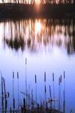 set sun för reflexion Royaltyfri Bild