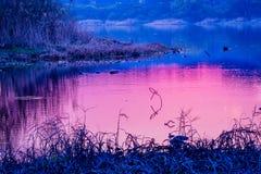 set sun för reflexion Royaltyfria Foton