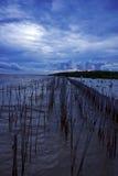set sun för smällpu-sjösida Arkivfoton