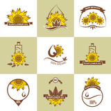 Set of sunflower oil emblems, labels, logos Royalty Free Stock Photography