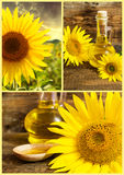Set of sunflowers and vegetable oil Stock Photography