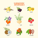 Set of superfoods in flat style. Healthy lifestyle. Fruits and vegetables for health. Vector illustration Stock Photos