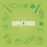 Set of superfoods products, berries, fruits, vegetables in vector Royalty Free Stock Photography