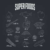 Set of superfoods products, berries, green on blackboard in vector. Icons, symbols, emblems of cocoa beans, goji berry, vanilla beans, spirulina, avocado for Royalty Free Stock Image