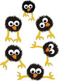 Set of surprised black chicks. Comic cartoon  vector illustration on white background Stock Photo