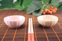 Set for a sushi on a bamboo napkin. Removed close up against green foliage Stock Photography