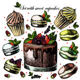 Set with sweet cupcakes Royalty Free Stock Photo