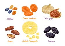 Set of sweet dry fruit snacks. Vector illustration in flat style. royalty free illustration