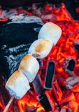 Set of sweet marshmallows roasting over red fire flames. Marshmallow on skewers roasted on charcoals.  Royalty Free Stock Image