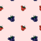 Set of sweet patterns. Seamless backgrounds with raspberries.  Royalty Free Stock Photography