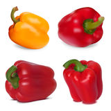 Set of Sweet Peppers Royalty Free Stock Photo