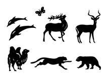 Set - sylwetki zwierzęta Fotografia Royalty Free