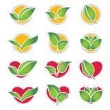 set symbol för eco Royaltyfria Foton