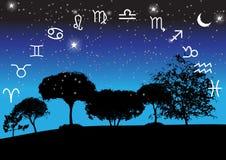 Set of Symbol Zodiac Sign. Vector Illustration. Stock Images