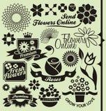 Set symbole, ikony i znaki kwiatu, Obraz Royalty Free