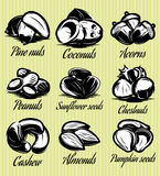 Set symbols patterns of different seeds, nuts, fruits Royalty Free Stock Images