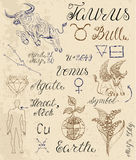 Set of symbols for zodiac sign Taurus or Bull royalty free illustration