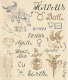Set of symbols for zodiac sign Taurus or Bull Royalty Free Stock Photos