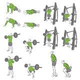 Set systematyczni bodybuilding ćwiczenia Fotografia Stock