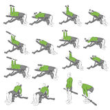 Set systematyczni bodybuilding ćwiczenia Zdjęcia Stock