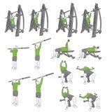 Set systematyczni bodybuilding ćwiczenia Obrazy Royalty Free