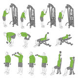 Set systematyczni bodybuilding ćwiczenia Zdjęcie Stock