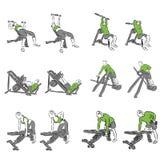 Set systematyczni bodybuilding ćwiczenia Zdjęcie Royalty Free