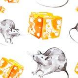 Set szary szczur i kawa?ek ? zdjęcie stock