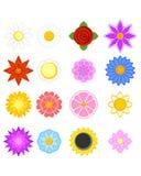 Set szesnaście kwiatów Zdjęcia Royalty Free