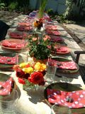 Set table. Table set for dinner party Royalty Free Stock Photography