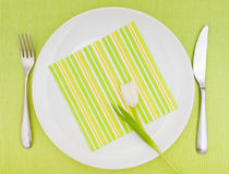 Set Table Stock Photography