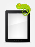 Set of Tablet PC Stock Photo