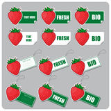 Set of tags and stickers with strawberries Royalty Free Stock Photography