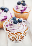 Set of tasty blueberry cupcakes Stock Images