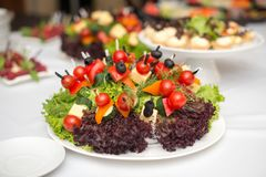Set of tasty canape, on a plate of greens, tomatoes, peppers, cheese. Stock Photo