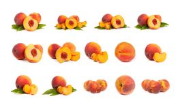 Set of tasty juicy peaches with slices on a white background Royalty Free Stock Photos