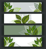 Set of tea banners Royalty Free Stock Images