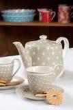 set tea för gray Arkivbilder