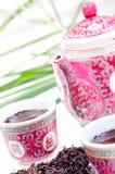 set tea för kinesiskt porslin royaltyfria foton
