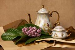 set tea för porslinporslin Arkivfoto