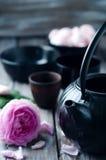 set tea för asiat Royaltyfria Bilder