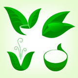 The set of tea or herbal drinks logo Royalty Free Stock Photo