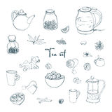 Set tea party objects. Collection with hand drawn kettle,jar,lemon,leaf,cup,ginger,cinnamon. vector illustration. Stock Image
