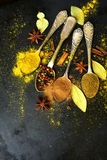 Set of  teaspoons with spices . Stock Photography