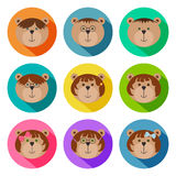 Set of teddy bears classmates flat icons. Drop shadow effect. Colorful avatar set of funny girls and boys. Vector illustration for Royalty Free Stock Images