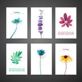 Set template design card with flower decor. Invitation set with minimal design. Decor with flower, plant, herb. Luxury Royalty Free Stock Photos