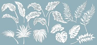 Free Set Template For Cutting. Palm Leaves Pattern. Laser Cut. Vector Illustration Stock Photos - 166793813